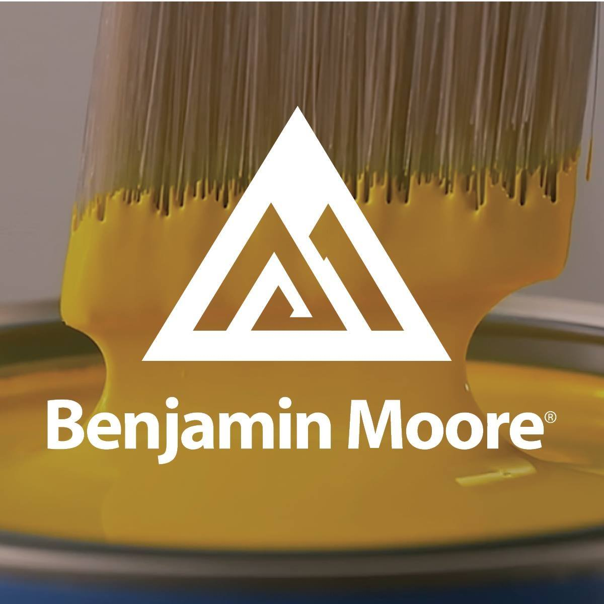 Benjamin Moore Paints Painting Example